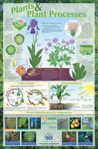 Plant Science, Animal Science, Insect Science, Item Number 35-1156