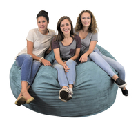 Bean Bag Chairs, Item Number 5002858