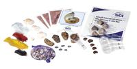 Fossils, Geologic Time, Item Number 20-3913