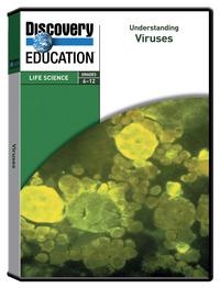 VHS, DVDs, Educational DVDs Supplies, Item Number 529542
