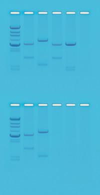 Biotechnology, Item Number 562012