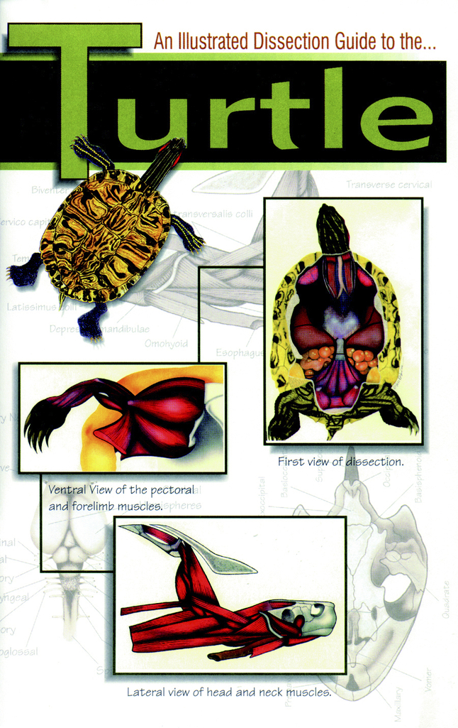 Life Science Products, Books Supplies, Item Number 597027